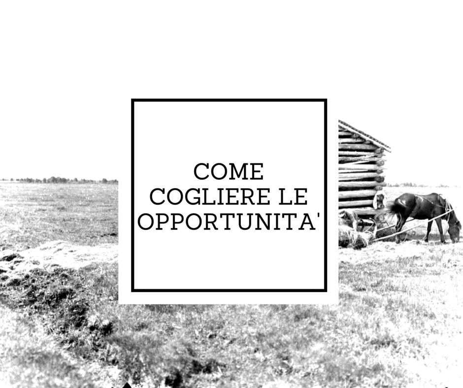 cogliere opportunità